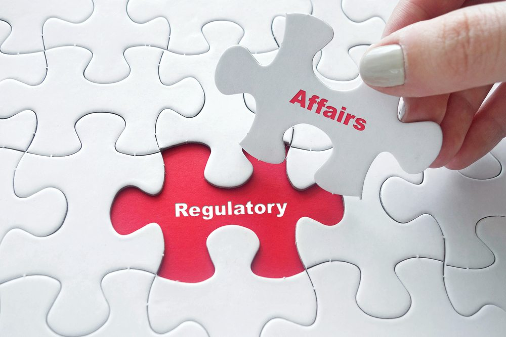 the regulatory submissions puzzle
