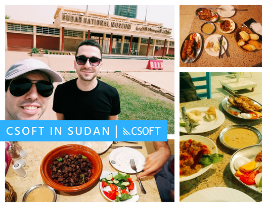 Learning about CSOFT in Sudan!