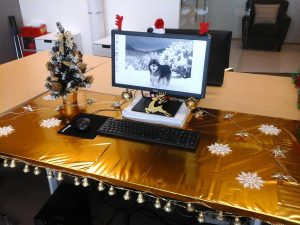 Mary SZ Desk