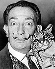 A photo of Salvador Dali, renowned Catalan artist and Surrealist painter.